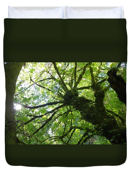 Old Growth Tree In Forest Duvet Cover