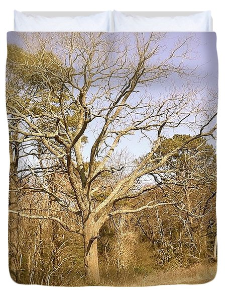 Old Haunted Tree Duvet Cover by Amazing Photographs AKA Christian Wilson