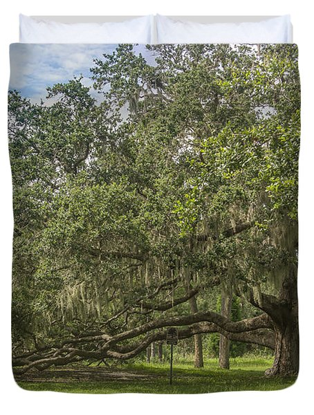Duvet Cover featuring the photograph Old Oak Tree by Jane Luxton