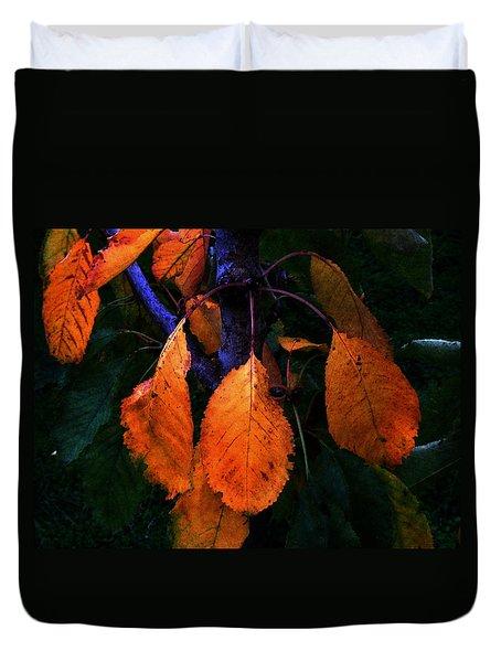 Old Orange Leaves Duvet Cover