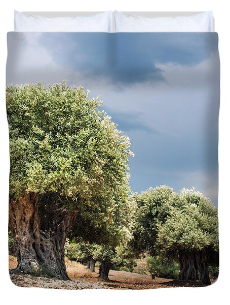 Olive Grove Duvet Cover by Mike Santis