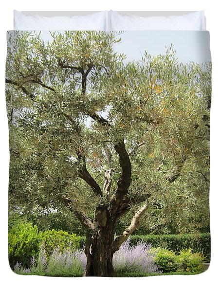 Olive Tree Duvet Cover by Pema Hou