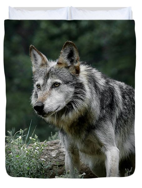 On Alert Duvet Cover by Ernie Echols