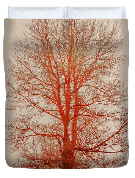 On Fire In The Fog Duvet Cover by Lois Bryan