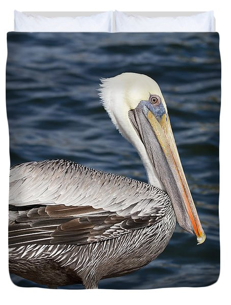 On The Edge - Brown Pelican Duvet Cover by Kim Hojnacki