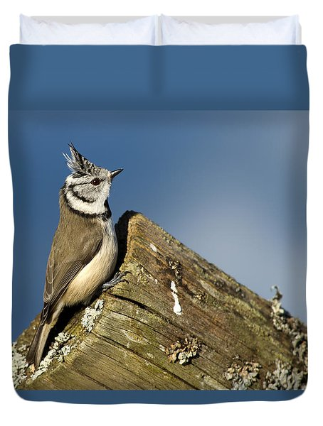 On The Edge Duvet Cover by Torbjorn Swenelius