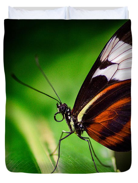 On The Wings Of Beauty Duvet Cover