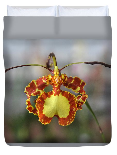 Oncidium Dancing Lady  Duvet Cover by Venetia Featherstone-Witty