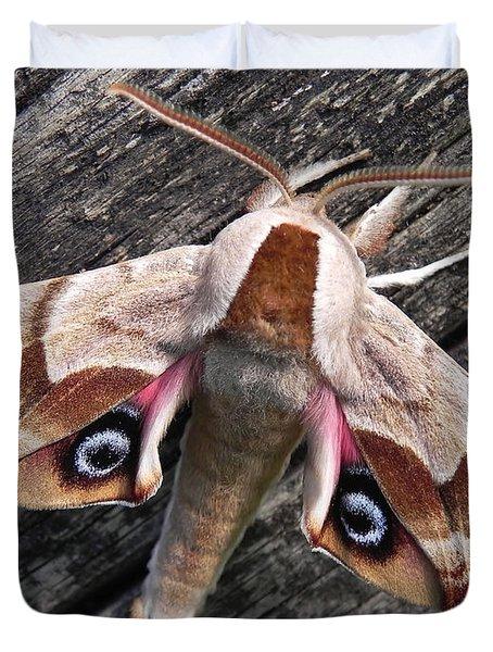 One-eyed Sphinx Duvet Cover