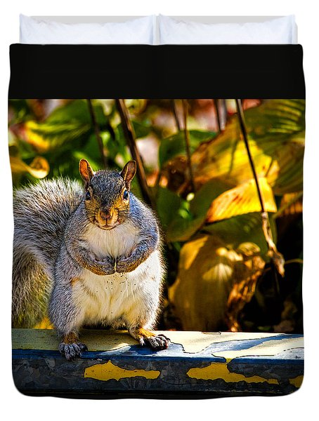 One Gray Squirrel Duvet Cover