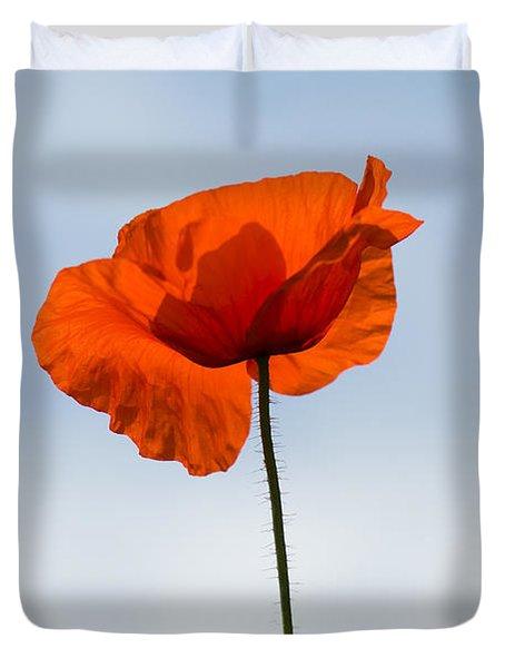 One Poppy Duvet Cover by Anne Gilbert