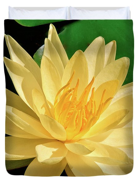 One Water Lily  Duvet Cover by Ed  Riche