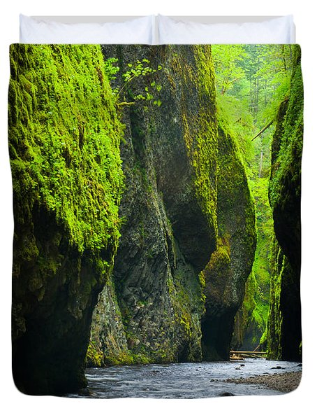 Oneonta River Gorge Duvet Cover by Inge Johnsson