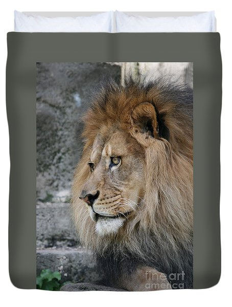 Duvet Cover featuring the photograph Onyo #11 by Judy Whitton