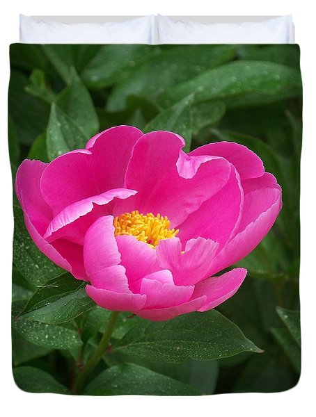 Duvet Cover featuring the photograph Peony  by Eunice Miller
