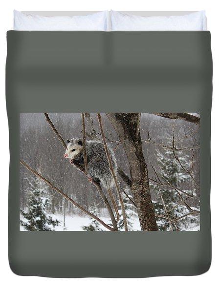 Opossum In A Tree Duvet Cover