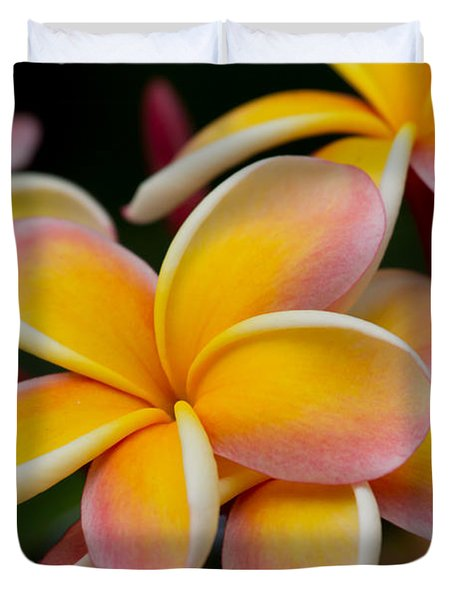 Orange And Pink Plumeria Duvet Cover by Roger Mullenhour
