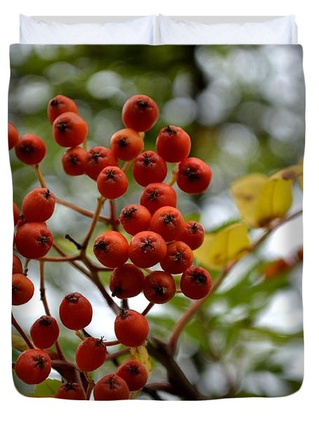 Orange Autumn Berries Duvet Cover