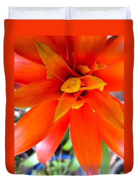 Orange Bromeliad Duvet Cover