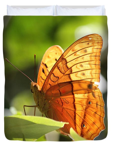 Orange Butterfly Duvet Cover by Jola Martysz