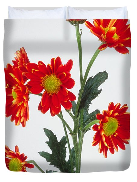 Orange Carnations Duvet Cover