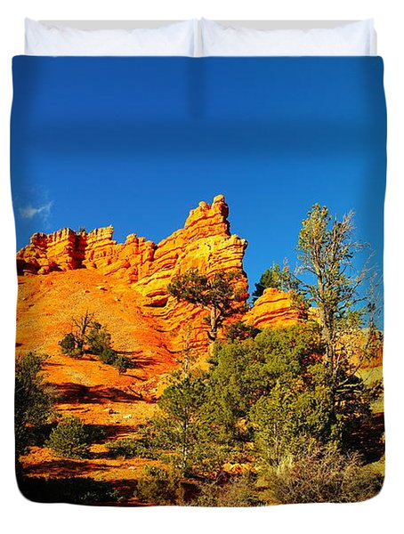 Orange Foreground A Blue Blue Sky  Duvet Cover by Jeff Swan