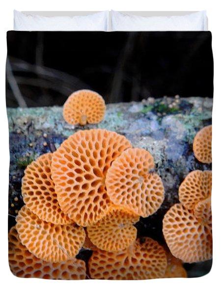 Orange Fungus Duvet Cover by Pamela Walton