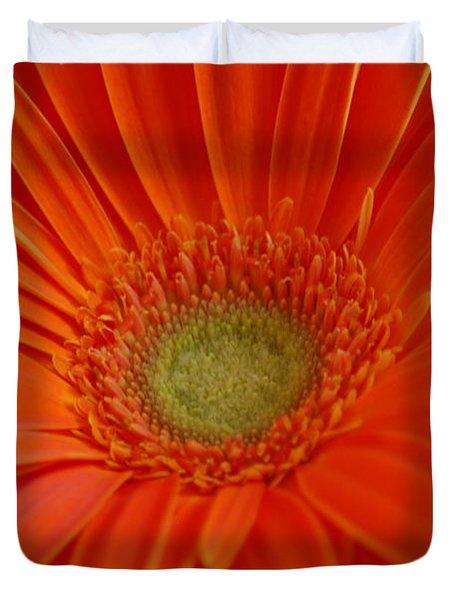 Orange Gerber Daisy Duvet Cover