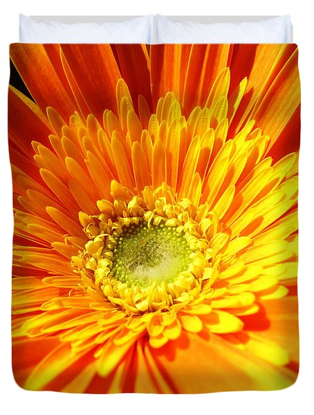 Orange Gerbera Duvet Cover