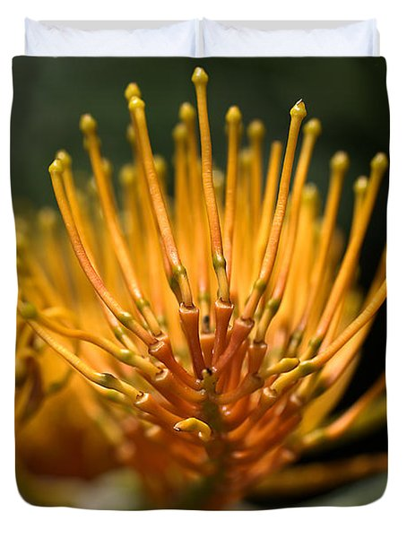 Orange Grevillea Duvet Cover