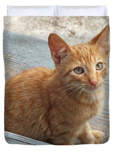 Orange Kitten 2 At The Front Porch Duvet Cover