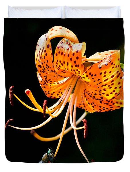 Orange Lily - Lilium Kelleyanum Duvet Cover
