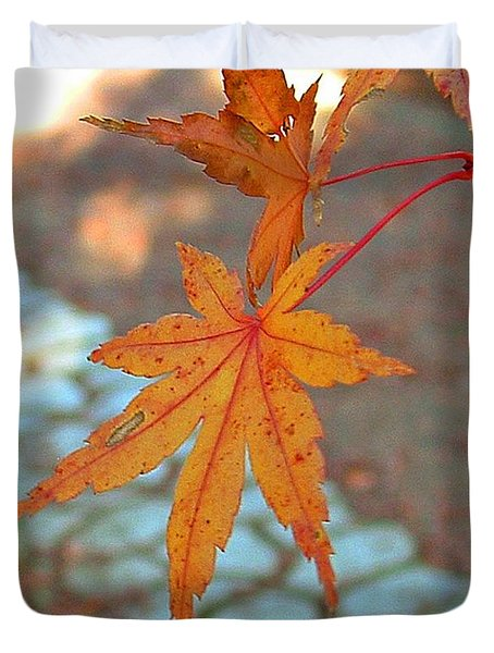 Orange Maple Leaves Duvet Cover by Lorna Hooper