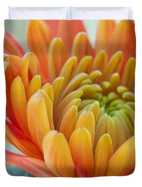 Orange Mum Closeup Duvet Cover