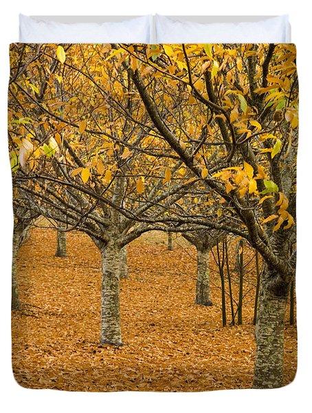 Orange Orchard Duvet Cover by Tim Hester