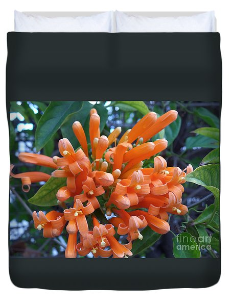Orange Petals Duvet Cover by HEVi FineArt