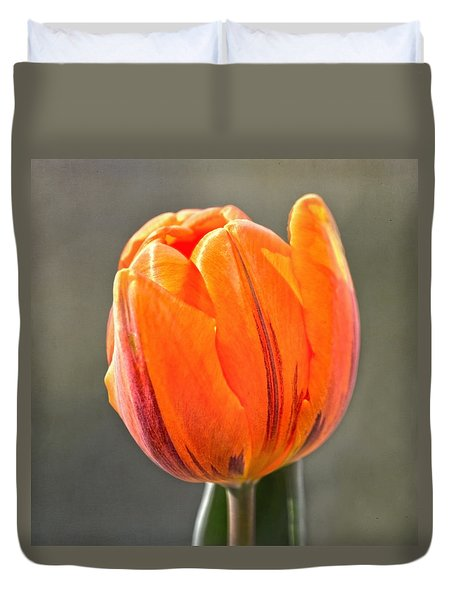 Orange Red Tulip Square Duvet Cover by Sandi OReilly