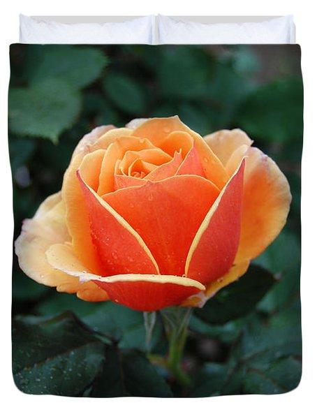 Duvet Cover featuring the photograph Orange Rose by Eva Kaufman
