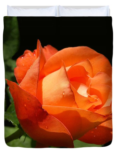 Duvet Cover featuring the photograph Orange Rose by Haleh Mahbod