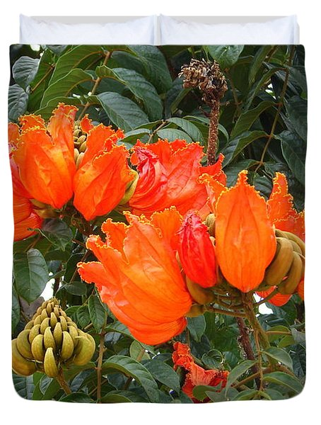 Duvet Cover featuring the photograph Orange Tree Blossoms by Lew Davis