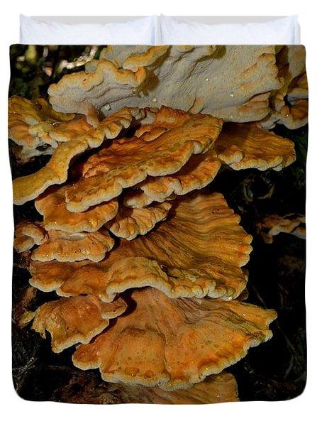 Orange Tree Fungus Duvet Cover