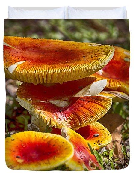 Orange V4 Duvet Cover by Douglas Barnard