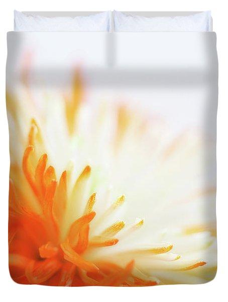 Orange Whisper Duvet Cover by Lisa Knechtel