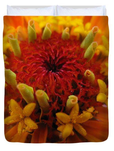 Orange Zinnia. Up Close And Personal Duvet Cover by Ausra Huntington nee Paulauskaite