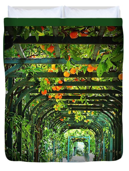 Duvet Cover featuring the photograph Oranges And Lemons On A Green Trellis by Brooke T Ryan