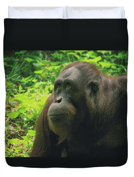 Duvet Cover featuring the photograph Orangutan by Dennis Baswell