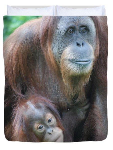 Orangutan Duvet Cover by DejaVu Designs