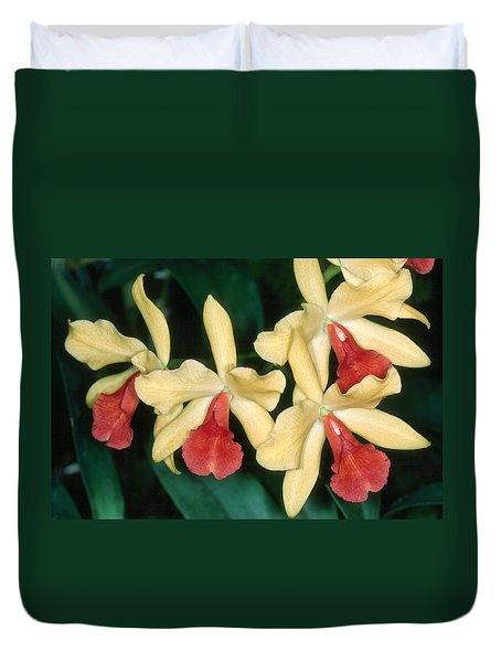 Orchid 11 Duvet Cover