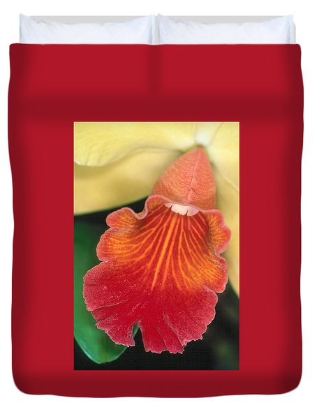 Orchid 16 Duvet Cover