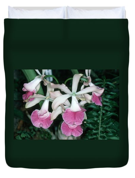 Orchid 17 Duvet Cover